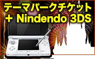 テーマパークチケット+Nindendo 3DS