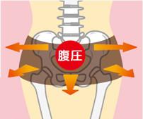 腹圧で骨盤をしっかりサポート