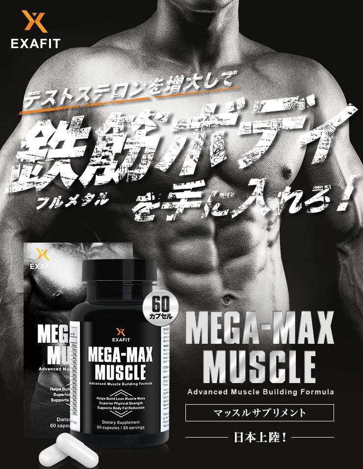 メガマックス・マッスルは、男性ホルモン・テストステロンの分泌を刺激、筋力強力サポートのBCAAやクレアチン等も配合