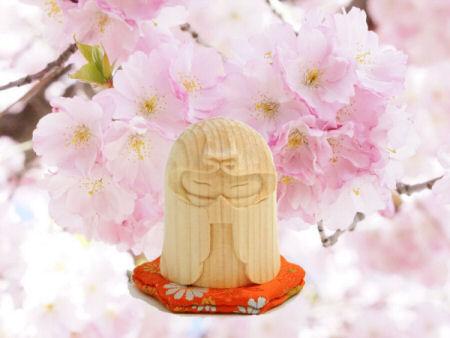 小毬ちゃんと桜
