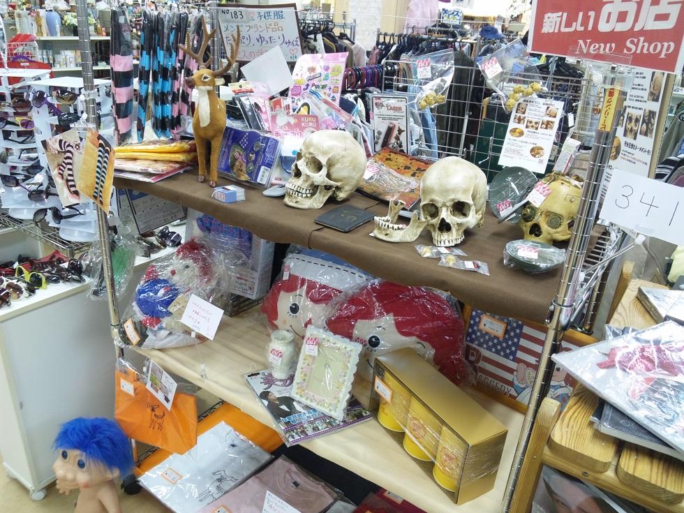 常設フリマ HOP100彩 高崎店に頭蓋骨模型を出店しています
