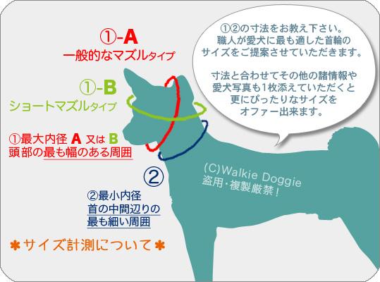 愛犬サイズの測り方
