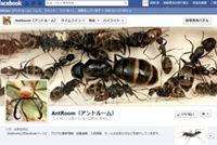 AntRoom公式facebookページ