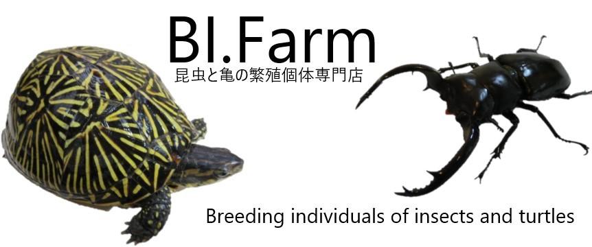 BI.Farm