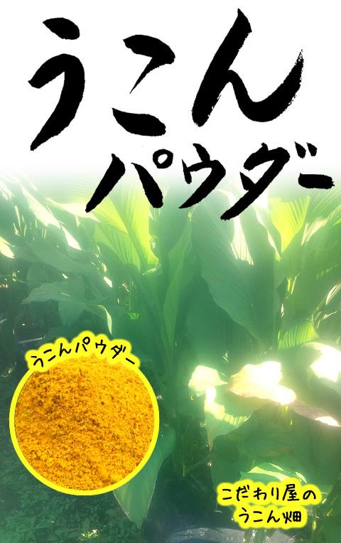 ウコンパウダー(吾平町・国産)50g