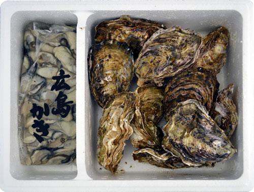 生牡蠣と殻付きのどちらも食せるお得セット