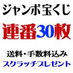 ジャンボ宝くじ・連番30枚
