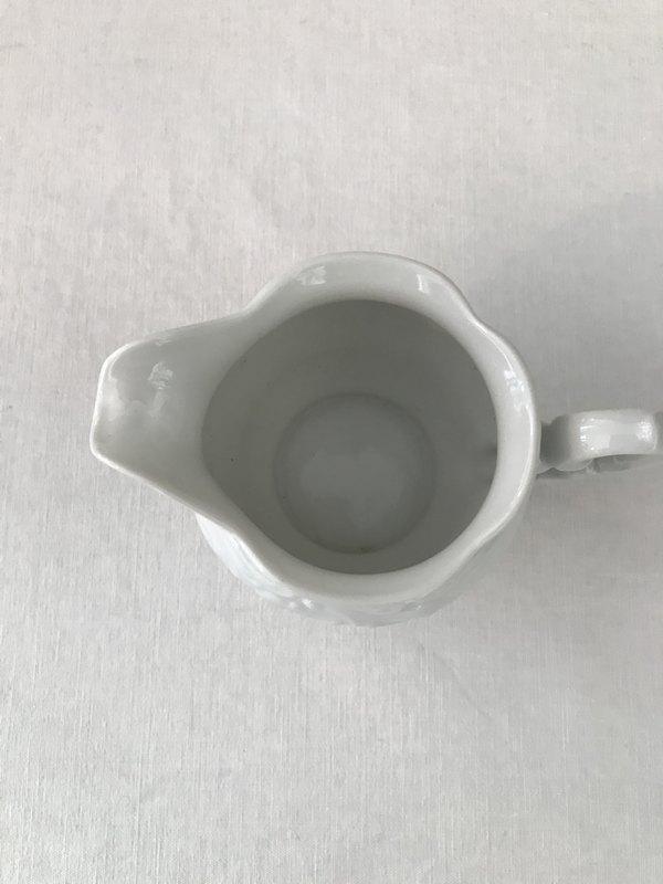 ポーランドの白い小さなピシェの画像