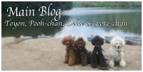 店長のブログ