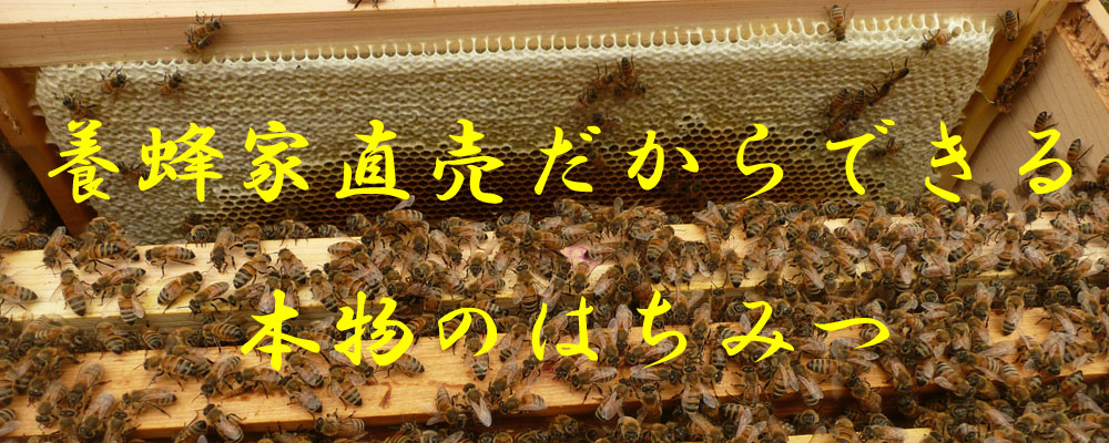 山中養蜂 買い物カゴ ページ