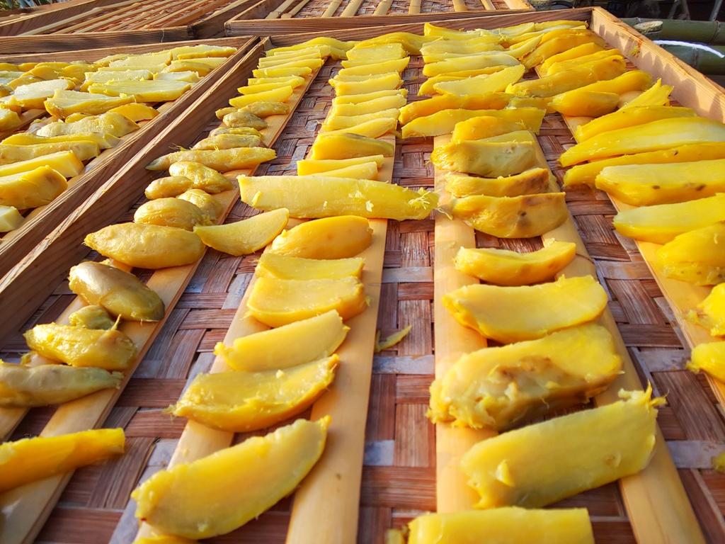 竹製の、すのこの上にさつま芋をならべ、ビニールハウスや強制乾燥ではなく、今では貴重な天日による自然乾燥をします。