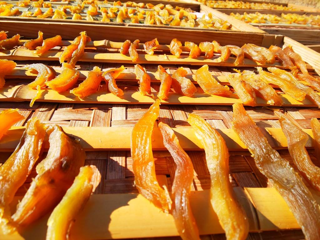 化学農薬、化学肥料不使用のため、干し芋の形、大きさが、不揃いになりますが、安心して食べられると思います。